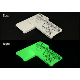 3D iPhone 5/5S cover (Frosted,luminous)